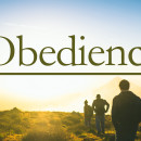 Obedience-wide